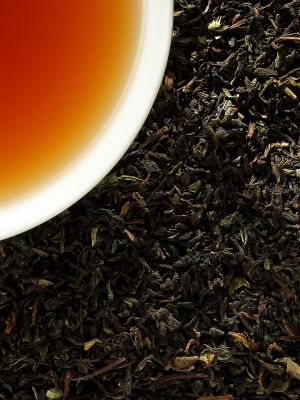 Darjeeling Aktionstee Bio